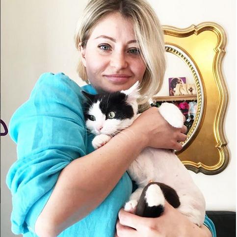 Стрижка кошек в салоне - кот Фокус