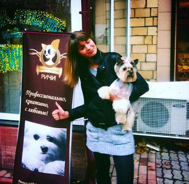 Салон красоты для собак - пространство фантазии, гармонии, заботы о домашних питомцах