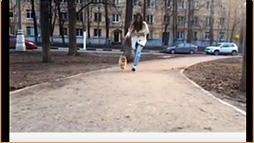 Видеопрезентация салона: стрижка собак вдохновляет природу пробуждаться