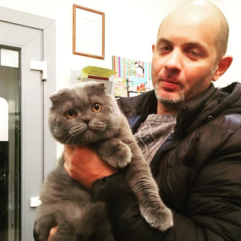 Стрижка кошек в салоне
