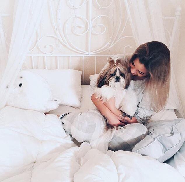 Груминг салон для собак в Москве - это место счастливых встреч. Мы искренне рады видеть любовь и дружбу человека и собаки