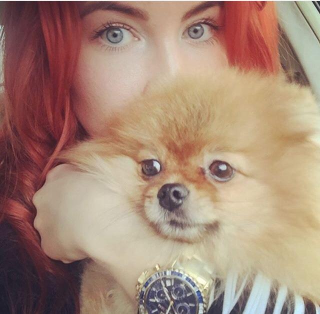 Груминг Шпица, фото красавицы Натальи и ее питомца Микки